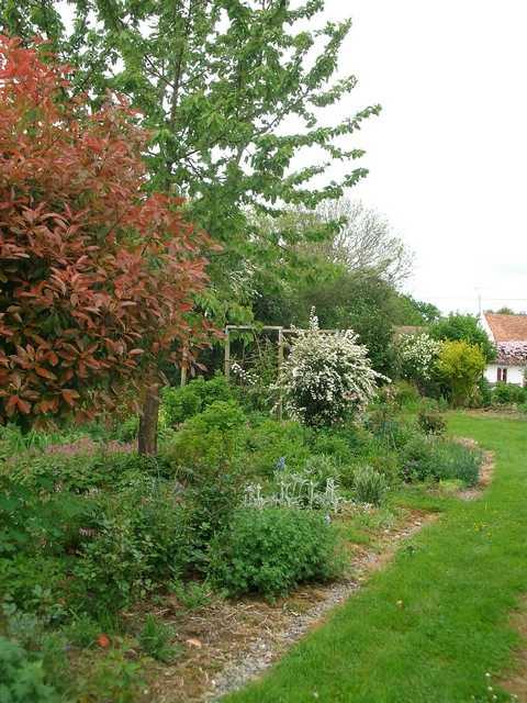 44 - prochain concours photos - Vue printanière de votre jardin ! - Page 3 Imgp0125