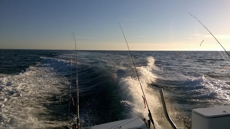 Pêche en mer Wp_20110