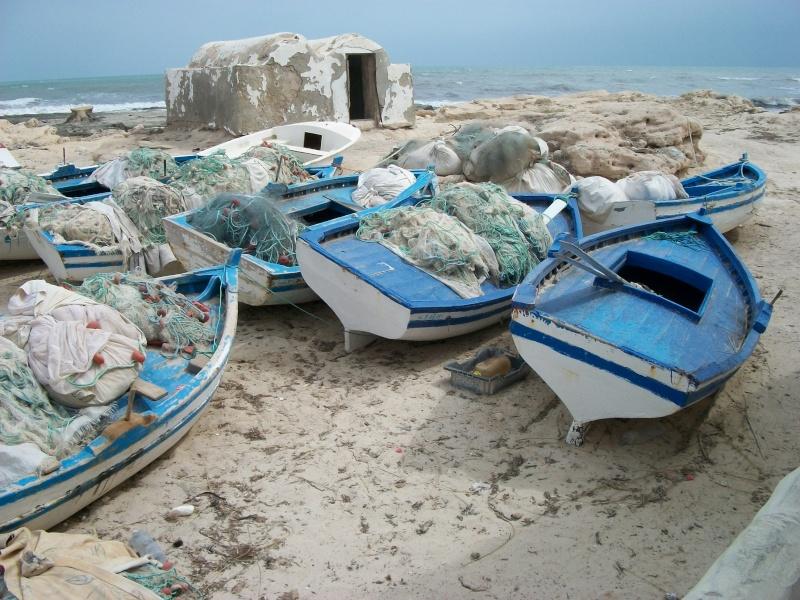 Les côtes algériennes sur Thalassa ce soir ! 02910