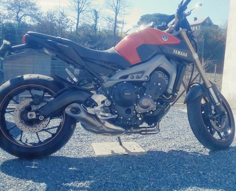 mt-09 orange ( roby 49 ) Wp_20115