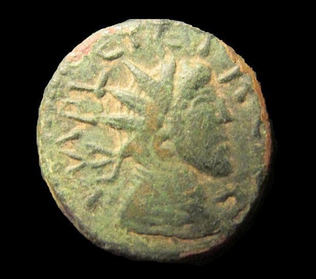 Collection imitations Trajan07 Captur12