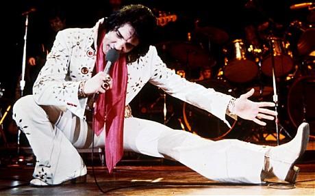 La musique en Hummer Elvis_10