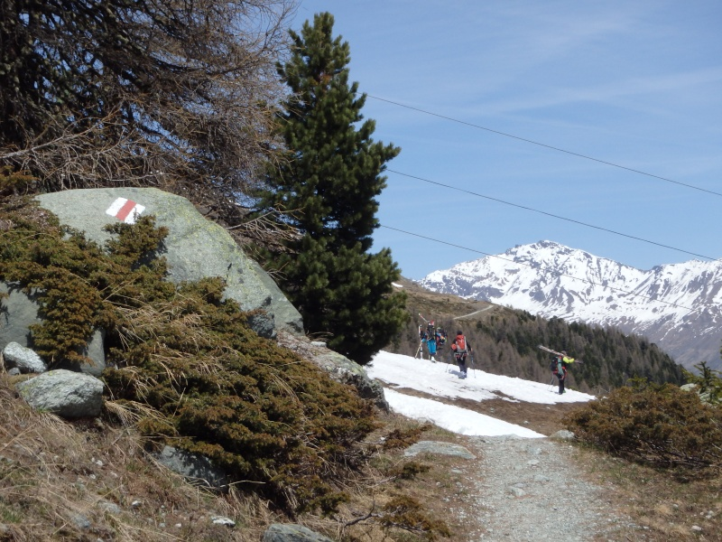 WE du 8-9-10 mai  Mont Blanc de Cheilon(3827m) et Pigne d'Arolla (3790m) P5100414