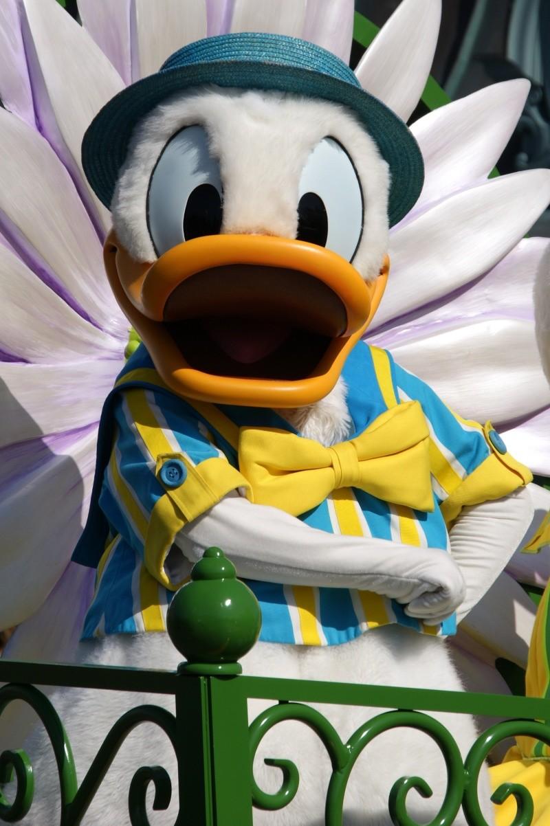 Vos photos avec les Personnages Disney - Page 39 Dsc02310
