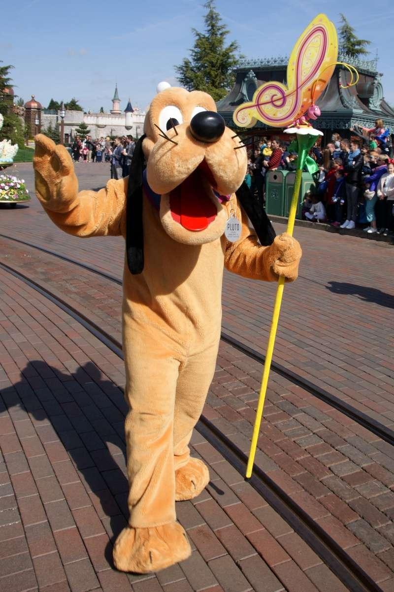Vos photos avec les Personnages Disney - Page 39 Dsc02321
