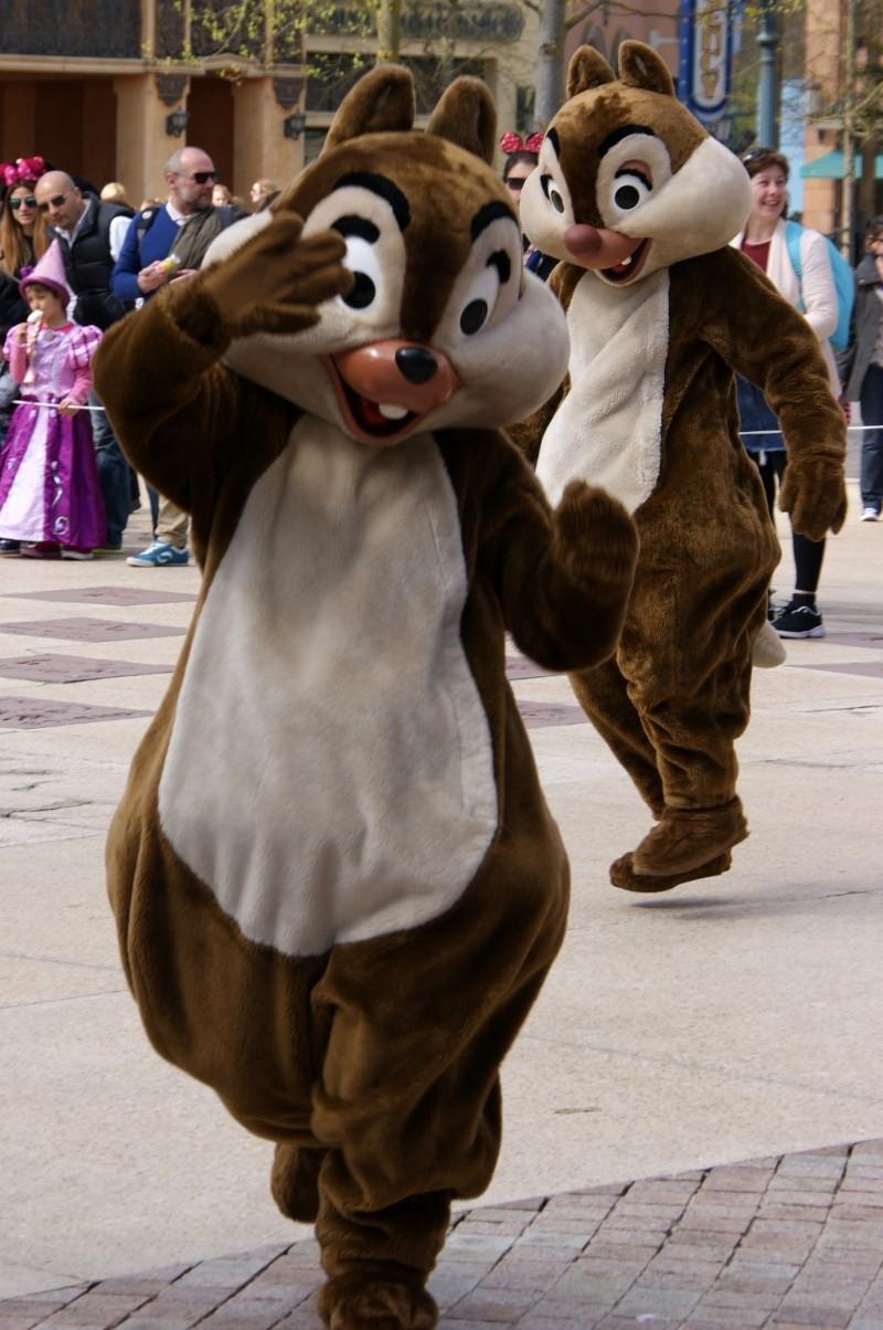Vos photos avec les Personnages Disney - Page 39 Dsc02411