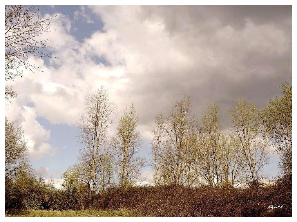 Le vent souffle,les nuages passent 072_co10