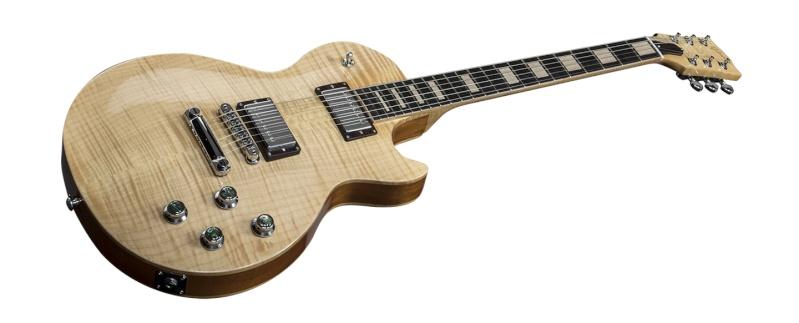 Gibson Guitars: Beauty Of The Burst - Portail Lptlpa10
