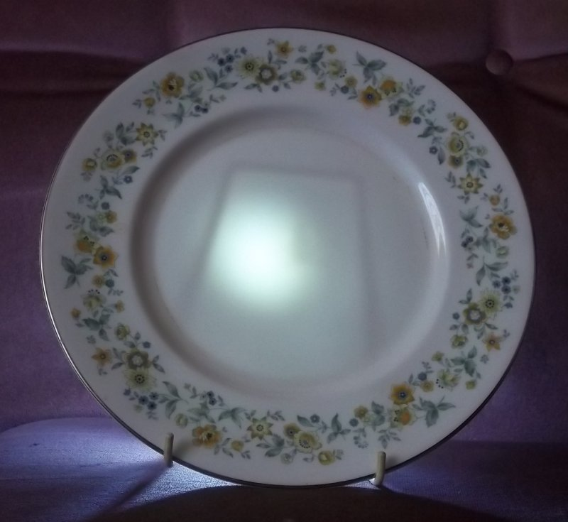 Handpainted plate. 100_2341