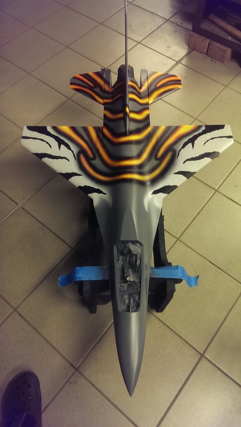 Mal was neues,  F-16 Tiger Projekt;) Imag1710