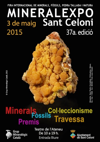 MINERALEXPO SANT CELONI 2015 Minera10