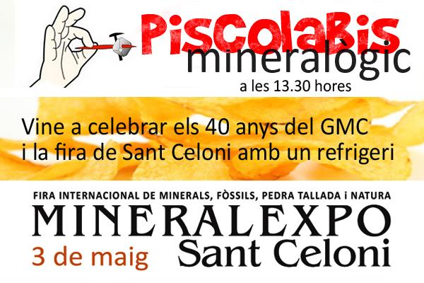 MINERALEXPO SANT CELONI 2015 Piscol10