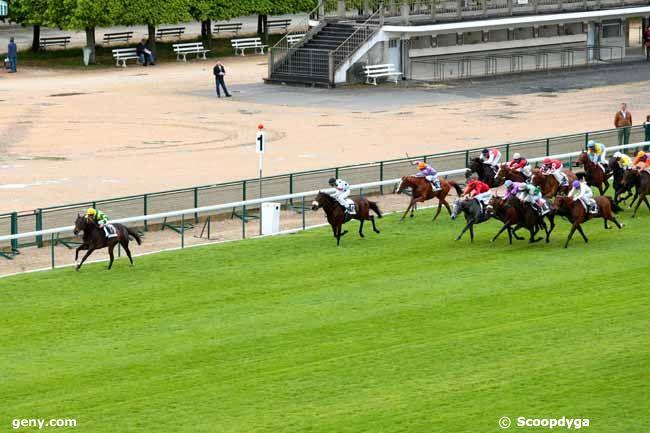 Quinté du 6 avril, Longchamp Divin_10