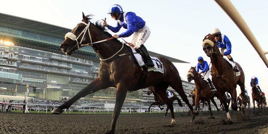 On dope bien les chevaux Dopage10