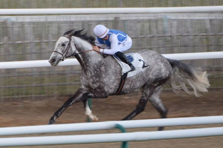WORLDWIDE STAKES RACES Solow_12