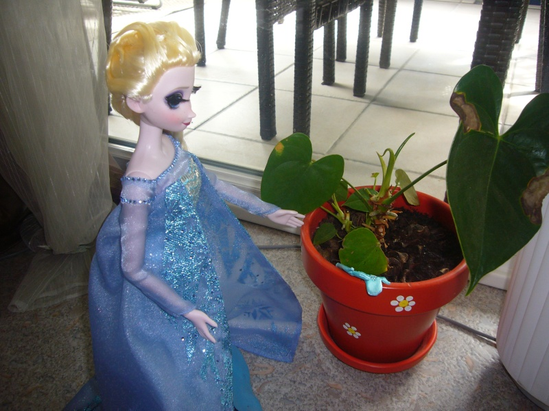 Mes petits courts métrages photos de LE Frozen... 2411