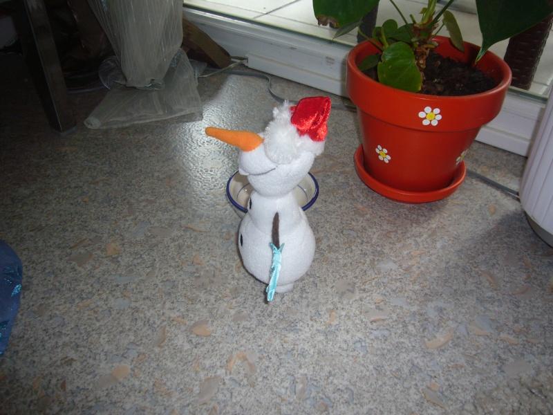 Mes petits courts métrages photos de LE Frozen... 3510