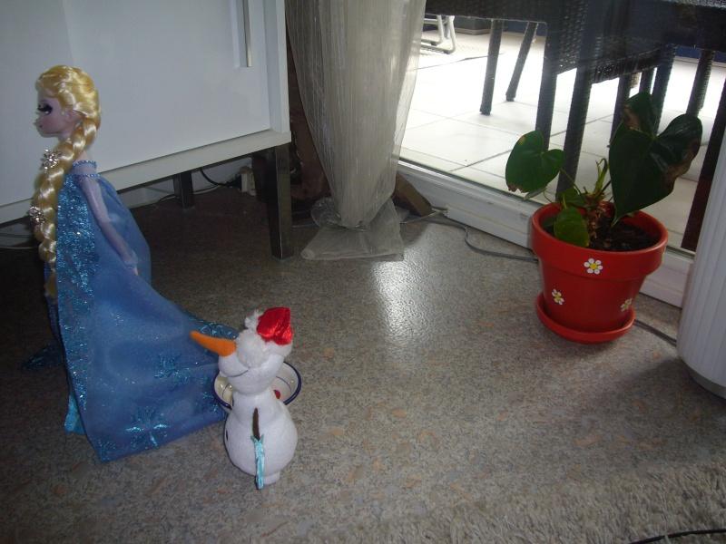 Mes petits courts métrages photos de LE Frozen... 3610