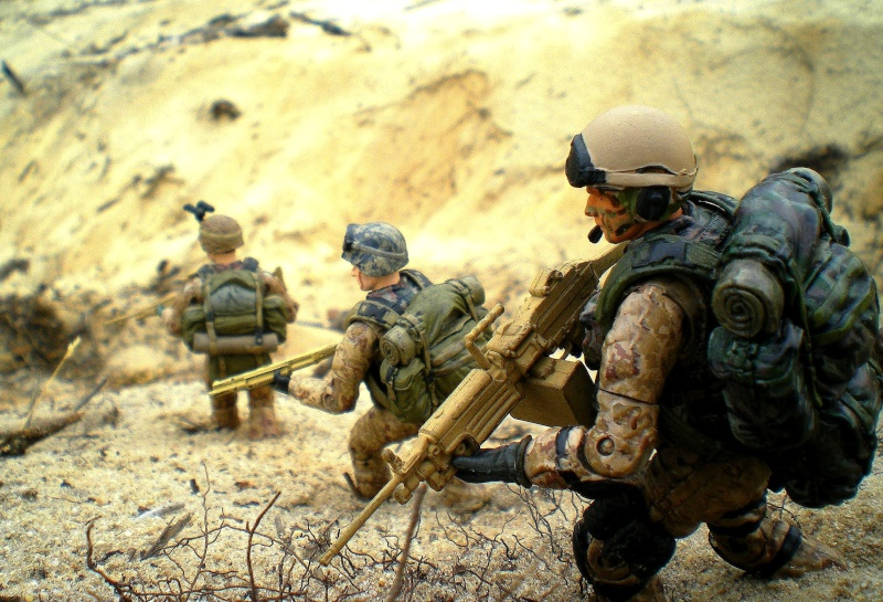 Selvaland, mes soldats en action - Page 11 813