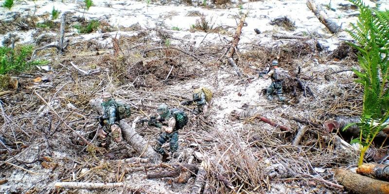 Selvaland, mes soldats en action - Page 9 Imgp2116