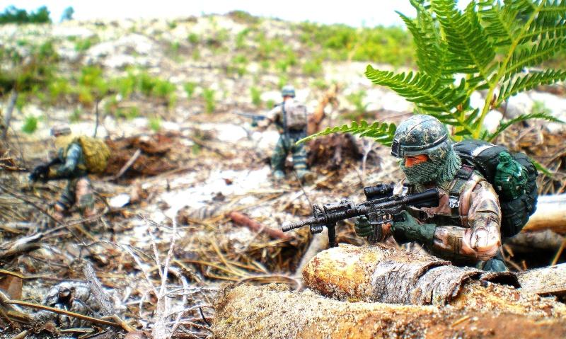 Selvaland, mes soldats en action - Page 9 Imgp2117