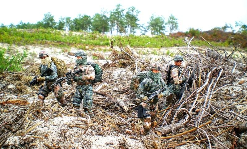 Selvaland, mes soldats en action - Page 9 Imgp2118
