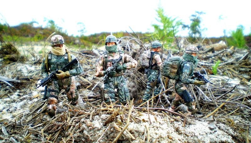 Selvaland, mes soldats en action - Page 9 Imgp2121