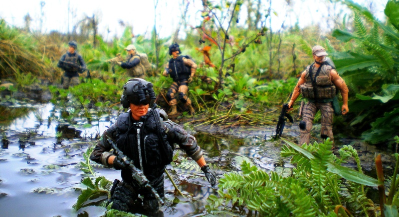 Selvaland, mes soldats en action - Page 10 Imgp2710