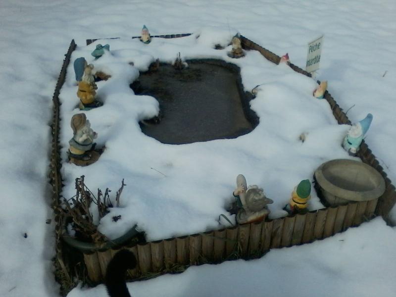 Mon bassin de jardin - Page 3 00110