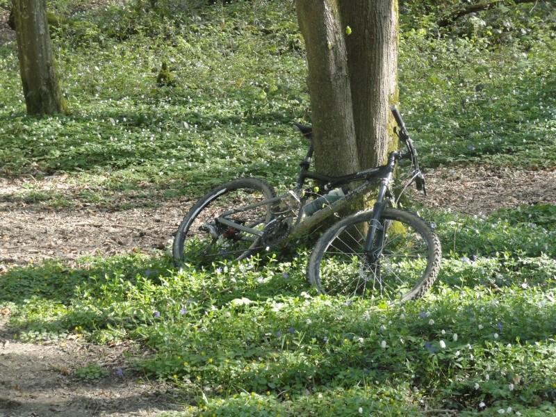 fat bike a petit prix  Dsc03413