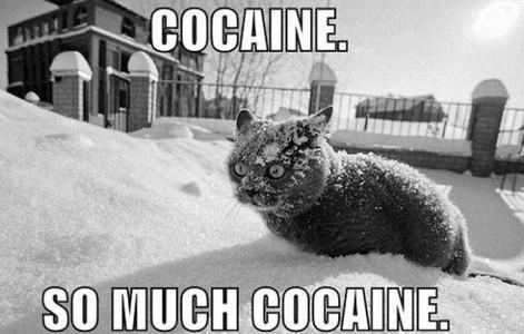Fou rire du jour - Page 4 Coke_c10