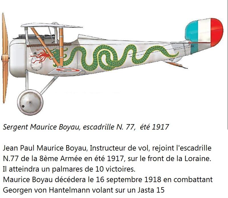 Concours 1ere Guerre Mondiale: [Eduard] Nieuport Ni-17 Sgt Boyau Ni-17_13