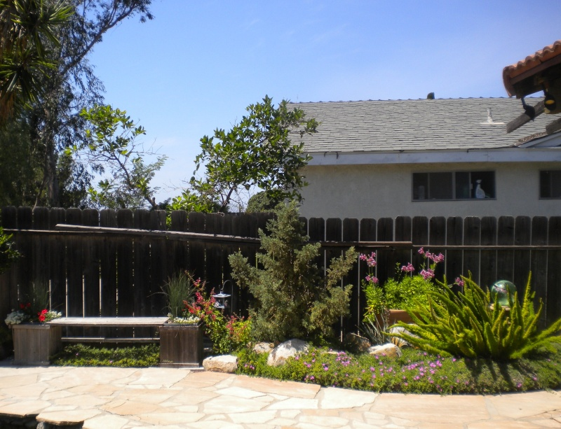 Lucy's (Lillith87) garden scrapbook. 43510