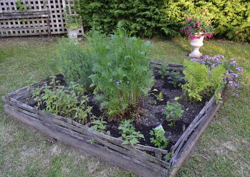 Jardinage.... Dsc_3215