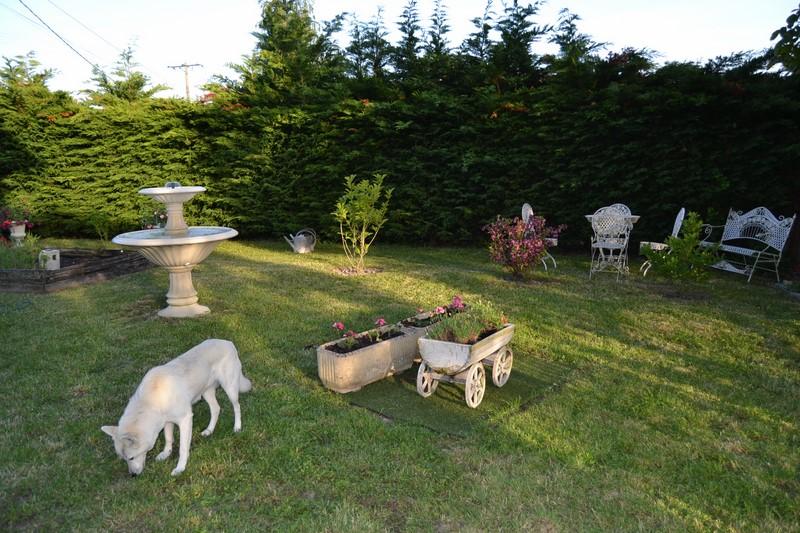 Jardinage.... Dsc_3216