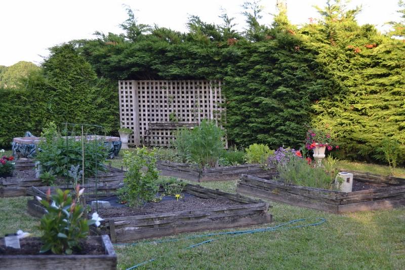 Jardinage.... Dsc_3218