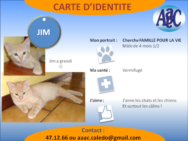 jim chaton 2mois Jim_aa10