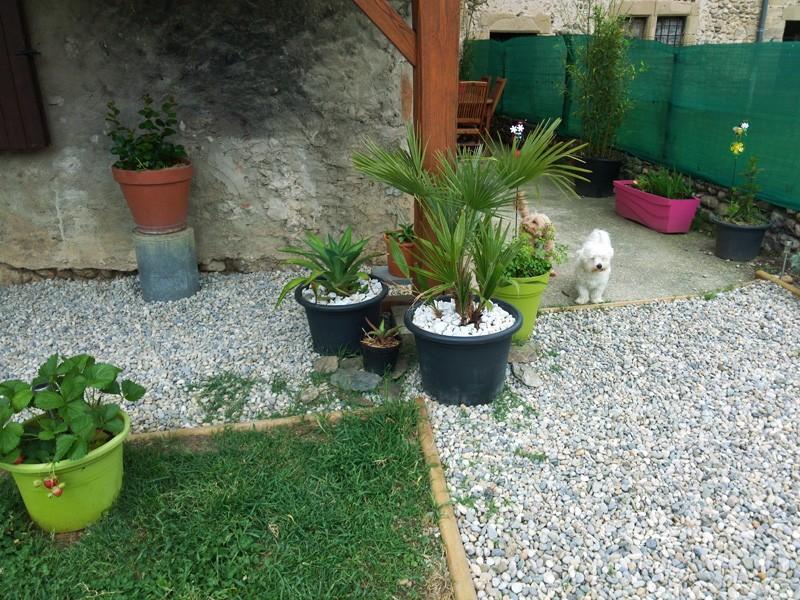 [PROJET] un point d'eau dans mon jardin Img_2016