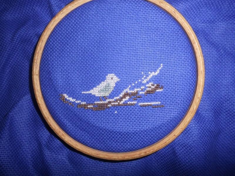 jardin d'hiver - une croix le temps d'un thé Dsci0823