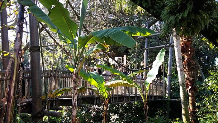 Florida Road Trip Report > 16 février - 5 mars 2015 [WDW en solo, KSC, Everglades, Keys, Dry Tortugas, Miami, USO] - Page 7 20150132