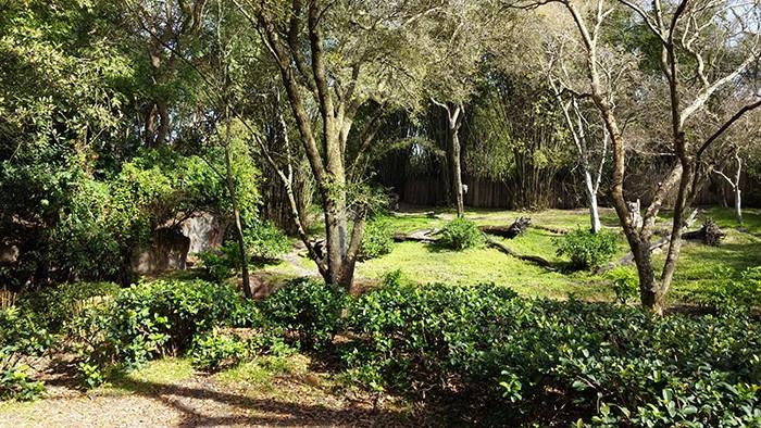 Florida Road Trip Report > 16 février - 5 mars 2015 [WDW en solo, KSC, Everglades, Keys, Dry Tortugas, Miami, USO] - Page 6 20150265