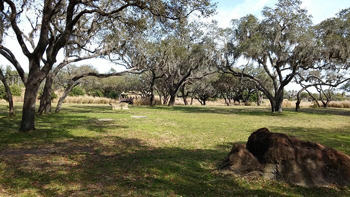 Florida Road Trip Report > 16 février - 5 mars 2015 [WDW en solo, KSC, Everglades, Keys, Dry Tortugas, Miami, USO] - Page 6 20150266
