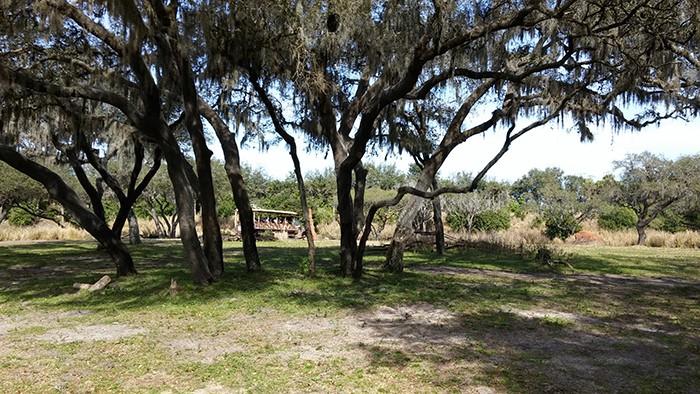 Florida Road Trip Report > 16 février - 5 mars 2015 [WDW en solo, KSC, Everglades, Keys, Dry Tortugas, Miami, USO] - Page 6 20150267