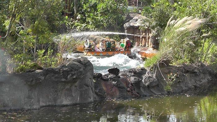 Florida Road Trip Report > 16 février - 5 mars 2015 [WDW en solo, KSC, Everglades, Keys, Dry Tortugas, Miami, USO] - Page 6 Vlcsna48
