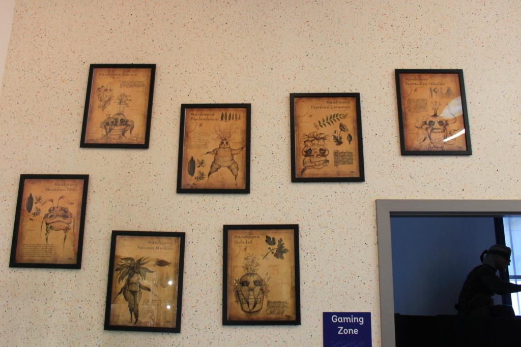 Pixel Museum, le premier musée permanent du jeu vidéo en France! - Page 3 Img_8557