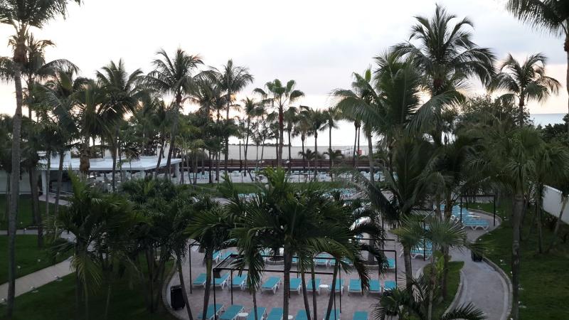 Tr Miami- everglades- Universal-Disney world- Discovery Cove 20150333