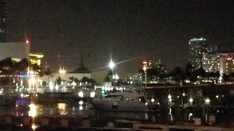 Tr Miami- everglades- Universal-Disney world- Discovery Cove 20150355