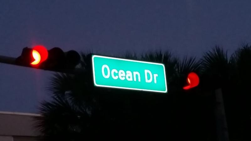 Tr Miami- everglades- Universal-Disney world- Discovery Cove - Page 2 20150361