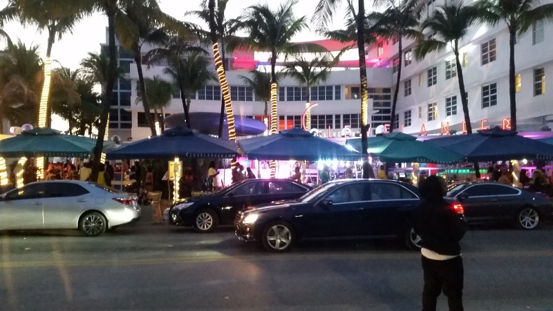 Tr Miami- everglades- Universal-Disney world- Discovery Cove - Page 2 20150362