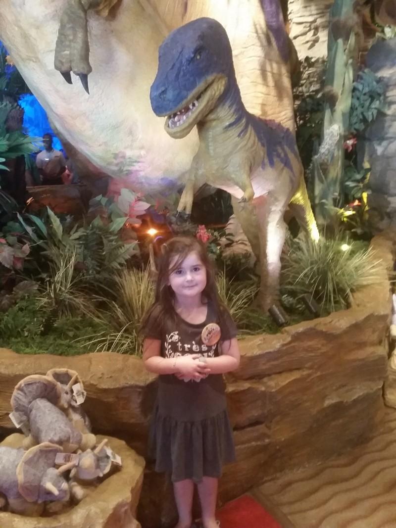 Tr Miami- everglades- Universal-Disney world- Discovery Cove - Page 2 20150370